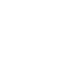 Snøscooter